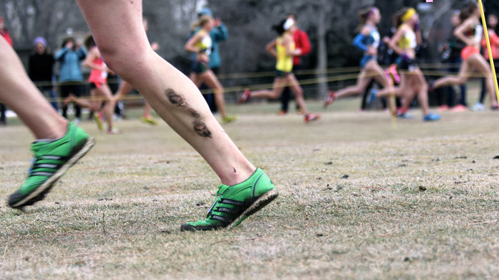 3 Tips for Training Between the Cross Country and Track Seasons