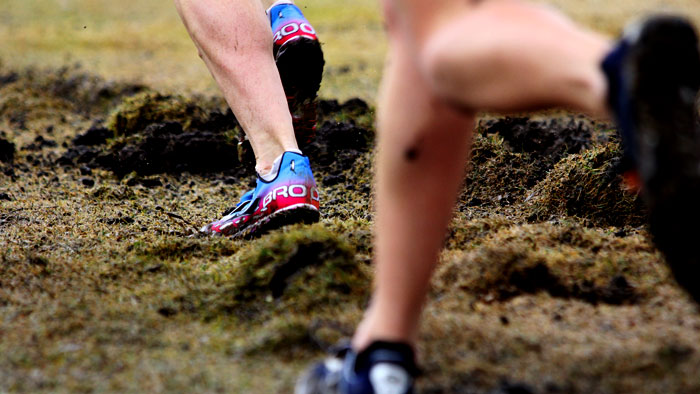 The #1 Rule of Endurance Training