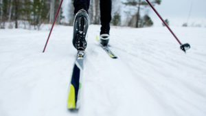 02045-striding-techniques-for-nordic-skiing-blog-700x394-v2