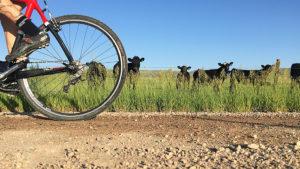 gravel-riding