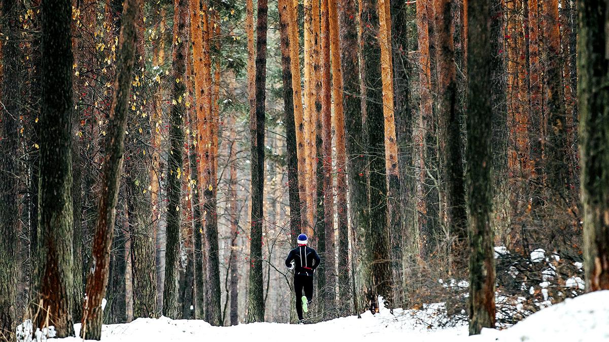 Essentials of Polarized Running