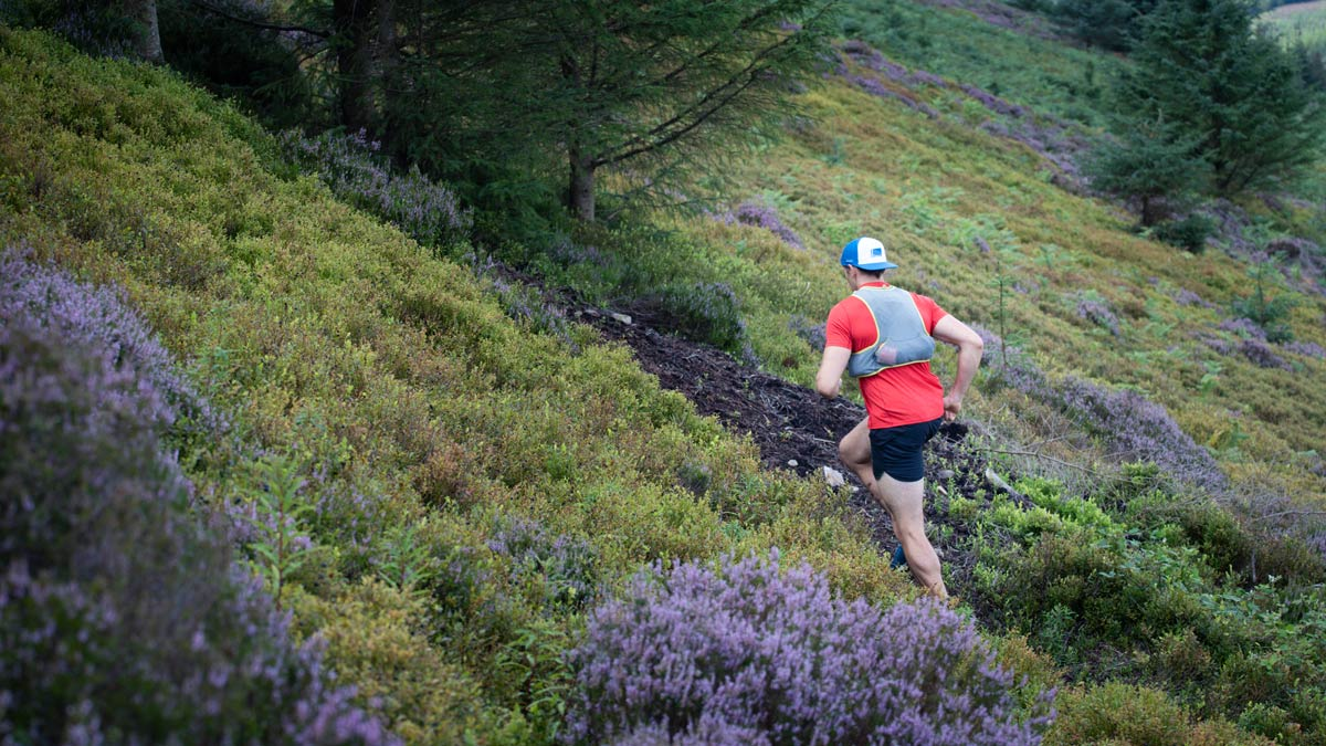Case Study: Two Hundred-Miler Training Approaches